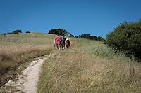 Richard Kelly, Mike and Diana Ellis hike a trail in Helen Putnam Regional Park on a summer day in Petaluma, California.