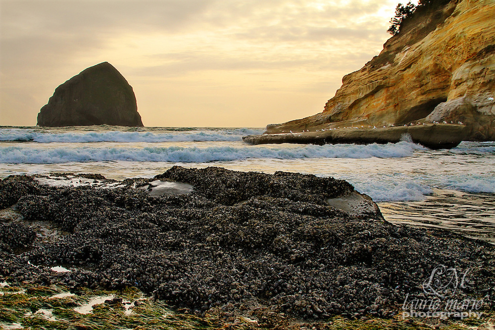 Sunset over haystack rock at Cape Kiwanda, Oregon Coast