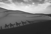 Black and white image of travelers on camels producing dune shadows in Merzouga on the Moroccan Algerian border