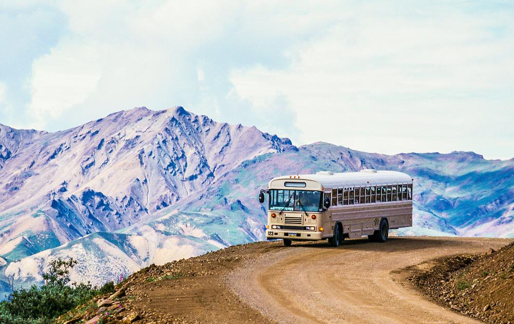 One of the tour buses that take tourists into Denali National Park via the Denali Park Road, Alaska, USA. aa036