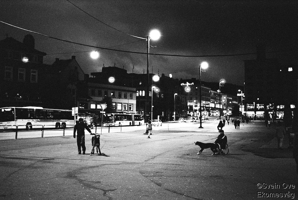 Stor hund og større hund.<br /> Foto: Svein Ove Ekornesvåg