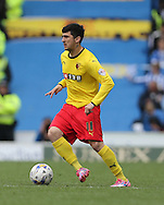 Fernando Forestieri during the Sky Bet Championship match between Brighton and Hove Albion and Watford at the American Express Community Stadium, Brighton and Hove, England on 25 April 2015.