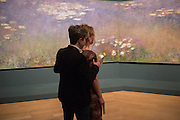 CHARLOTTE HARRIS; ALYS FOWLER, Painting the Modern Garden: Monet to Matisse Royal Academy of Art. Piccadilly, London. 26 January 2016