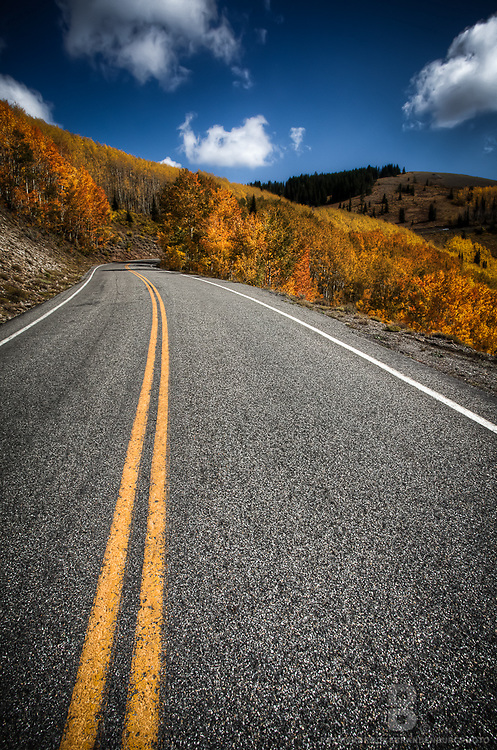 Vibrant fall colors on the Guardsman Pass Road in the Wastach Mountain Range in Utah, near Brighton Ski Resort.
