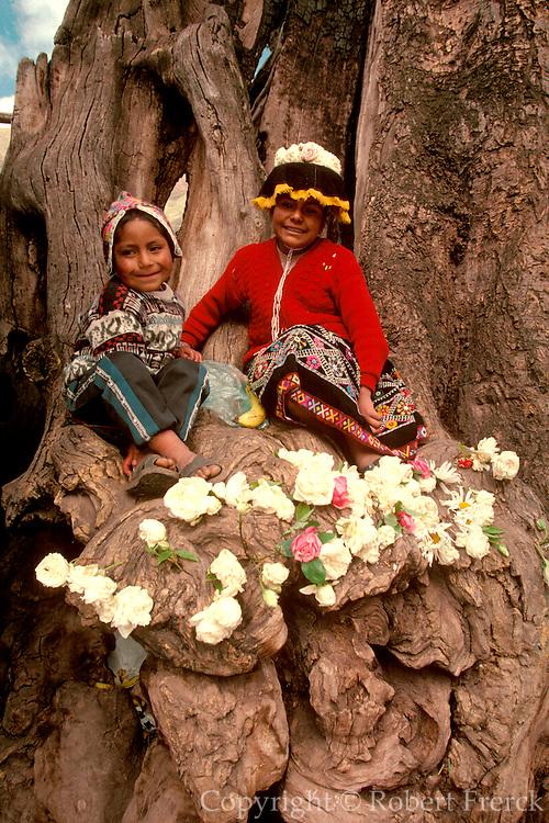PERU, HIGHLANDS, MARKETS Pisac; village; children in tree