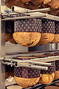 MILANO,The making  of Panettone. the Pasticceria Martesana workshop. once the panettone is cooked, must coold down upside down for hours. this must be done quite fast