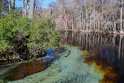 Santa Fe River mit typischer rot brauner Wasserfaerbung, Santa Fe River with typical red brown Water colour, Ginnie Spring, High Springs, Gilchrist County, Florida, USA, United States