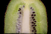 Kiwi fruit, (Actinidia deliciosa). The specimen was illuminated with white light to compare it with the shortwave ultraviolet light (UV) image in this series. This image is part of a series