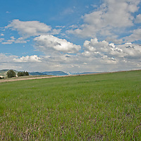 Cumulus clouds float over and pastures in Montana's southern Bridger Mountains, near Livingston and Bozeman.  The Absaroka Mountains rise in the background.