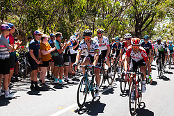 January 20, 2019 - Adelaide, South Australia, Australia - Peter Sagan, Bora Hansgrohe, at the end of Stage 6 of the Tour Down Under, Australia on the 20 of January 2019  (Credit Image: © Gary Francis/ZUMA Wire)