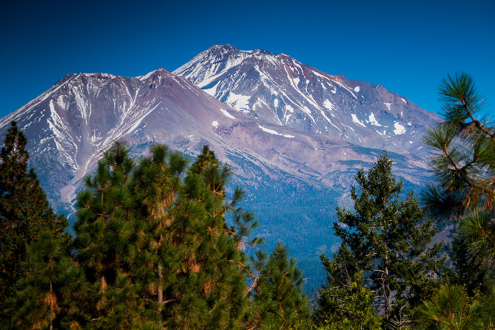 Mt. Shasta from Shasta View Treehouse Meadow, Mt. Shasta, California, US