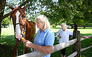 Penny Silcox Horse Farm Law Suit In Newtown