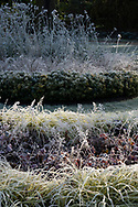 Frost coated plants in the Italian Garden at Chiswick House, Chiswick, London, UK