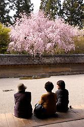Famous dry Zen garden Ryoan Ji in Kyoto Japan