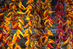 Sorrento, Italy, September 18 2017. Fresh and dried chilis hang in front of a trattoria in Sorrento, Italy. © Paul Davey