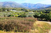 Farmland in Rio Tietar valley, Cuacos de Yuste, La Vera, Extremadura, Spain
