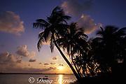 sunrise at Spanish Wells, Bahamas,<br /> ( Western Atlantic Ocean )