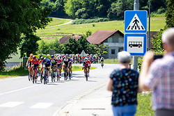 Peloton during 3rd Stage of 27th Tour of Slovenia 2021 cycling race between Brezice and Krsko (165,8 km), on June 11, 2021 in Slovenia. Photo by Matic Klansek Velej / Sportida