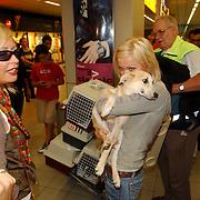 NLD/Amsterdam/20050702 - Bridget Maasland terug uit Bukarest met zwerfhonden die afgemaakt zouden worden, samen met moeder