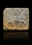 Hittite monumental relief sculpted orthostat stone panel from Water Gate Basalt, Karkamıs, (Kargamıs), Carchemish (Karkemish). 900-700 BC . Stag. Anatolian Civilisations Museum, Ankara, Turkey. With his large and many branched antler, he walks towards the right. <br /> <br /> On a black background. .<br />  <br /> If you prefer to buy from our ALAMY STOCK LIBRARY page at https://www.alamy.com/portfolio/paul-williams-funkystock/hittite-art-antiquities.html  - Type  Karkamıs in LOWER SEARCH WITHIN GALLERY box. Refine search by adding background colour, place, museum etc.<br /> <br /> Visit our HITTITE PHOTO COLLECTIONS for more photos to download or buy as wall art prints https://funkystock.photoshelter.com/gallery-collection/The-Hittites-Art-Artefacts-Antiquities-Historic-Sites-Pictures-Images-of/C0000NUBSMhSc3Oo
