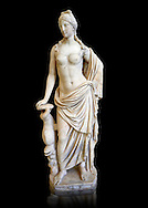 2nd - 1st century BC Roman marble sculpture of Aphrodite (Venus), 'Marine Venus' Type with a dolphin, copied from a Hellanistic Greek original,  inv 6296, Museum of Archaeology, Italy, black background ..<br /> <br /> If you prefer to buy from our ALAMY STOCK LIBRARY page at https://www.alamy.com/portfolio/paul-williams-funkystock/greco-roman-sculptures.html . Type -    Naples    - into LOWER SEARCH WITHIN GALLERY box - Refine search by adding a subject, place, background colour, etc.<br /> <br /> Visit our ROMAN WORLD PHOTO COLLECTIONS for more photos to download or buy as wall art prints https://funkystock.photoshelter.com/gallery-collection/The-Romans-Art-Artefacts-Antiquities-Historic-Sites-Pictures-Images/C0000r2uLJJo9_s0