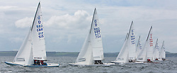 International Dragon Class Scottish Championships 2015.<br /> <br /> Day 1 racing in perfect conditions.<br /> <br /> Fleet start with GBR 515, Basilisk<br /> <br /> <br /> Credit Marc Turner