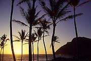 Sunrise, Makapu'u, Oahu, Hawaii, USA<br />