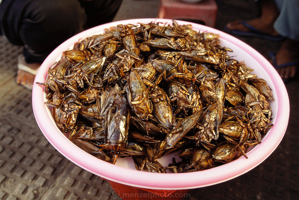 Phnom Penn, Cambodia. Central market. Fried cicadas.