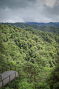 Viewers platform, Mashpi lodge, Mashpi, Ecuador, South America