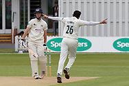 WICKET - Muhammad Abbas has Miles Hammond caught behind during the Specsavers County Champ Div 2 match between Leicestershire County Cricket Club and Gloucestershire County Cricket Club at the Fischer County Ground, Grace Road, Leicester, United Kingdom on 18 June 2019.