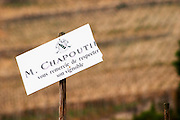 A broken sign in the vineyard saying M Chapoutier thanks you for respecting his vineyards. The Hermitage vineyards on the hill behind the city Tain-l'Hermitage, on the steep sloping hill, stone terraced. Sometimes spelled Ermitage. Detail. Tain l'Hermitage, Drome, Drôme, France, Europe