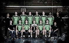 2014 volleybal