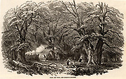 Charcoal burners in Mark Ash Wood in the New Forest, England. On the left one of the charcoal burners is controlling the burning of the clamp . At centre right is their cabin made of branches covered in turf and heather.  From 'The Illustrated London News' (London, 21 October 1848).