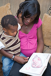 Heavily pregnant woman reading a book about new babies with her son,