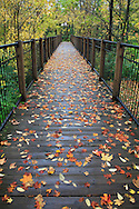 A Foot Bridge On A Rainy Day During Autumn In The Park, Sharon Woods, Southwestern Ohio