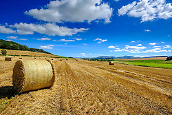 Straw bales in a field by the River Clyde in South Lanarkshire Scotland in late summer<br /> <br /> (c) Andrew Wilson   Edinburgh Elite media