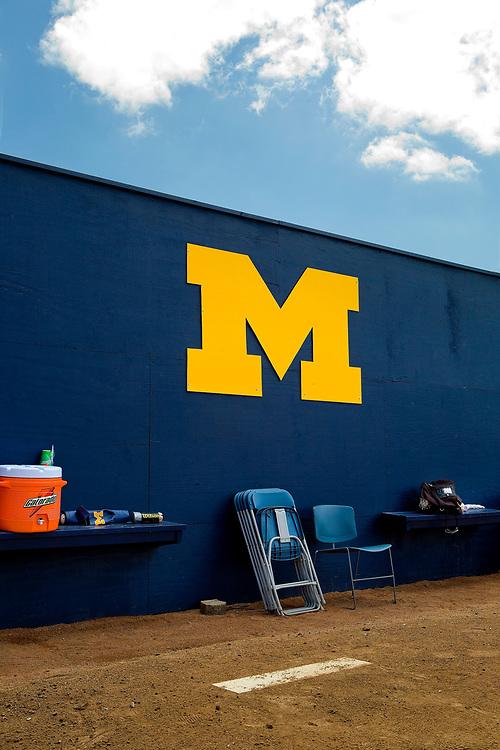 University of Michigan   Ann Arbor, MI