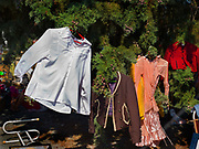 Clothes for sale hanging on a tree in a brocant market on the street, 21st November 2014, Lagrasse, France.