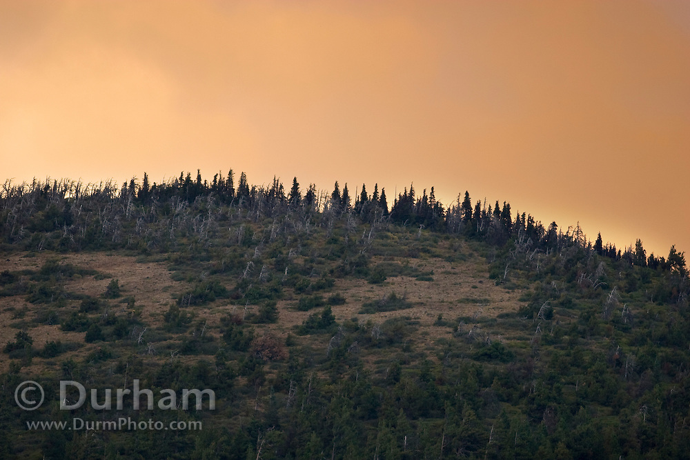 The summit of Black Butte with smoke from a nearby forest fire in the sky. Central Oregon.
