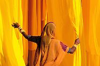 Inde, Rajasthan, Usine de sari ; India. Rajasthan. Sari factory
