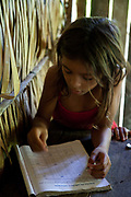 Young indigenous Arara girl reading and writing. A third of Altamira in the state of Para, Brazil will be flooded to make way for the Belo Monte dam, nearly all the people affected are the poorest in society or indigenous communities that will have nowhere to go if they were made homeless, and the Government payoff for their properties is low therefore making it difficult to find new accomodation. At present, the Arara land is protected from development, sale or new residents as it has been their ancestral land for hundreds of years, this is now one of the key areas under threat