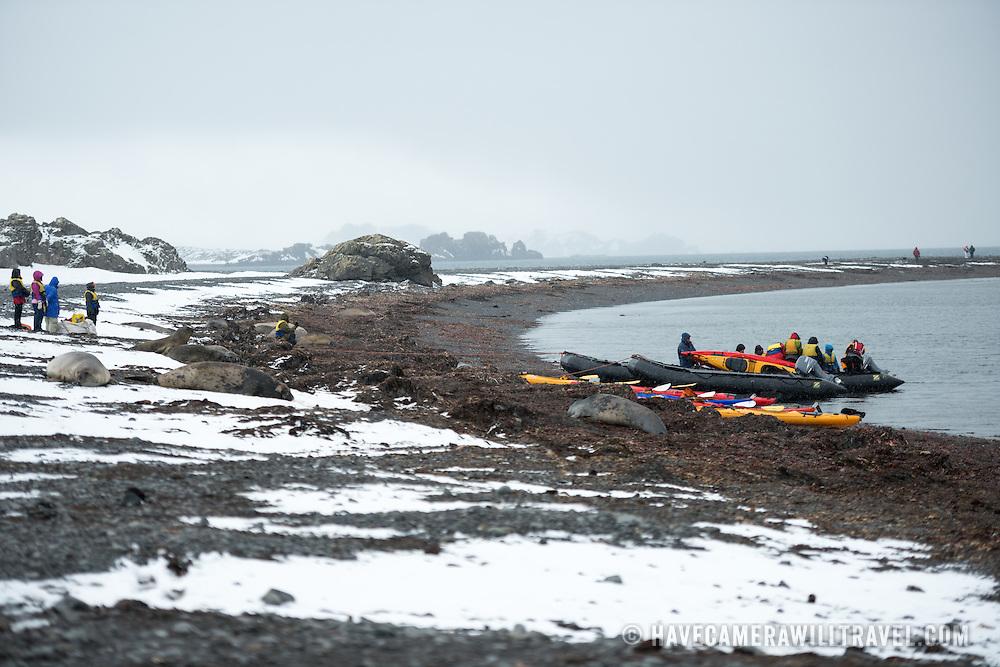 Southern Elephant Seals lounge on the beach near a zodiac and kayak landing site on a bay on Livingston Island, South Shetland Islands, Antarctica.