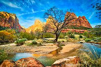 Zion National Park in Utah during fall foliage.