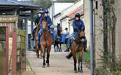 Stable staff at Kremlin House Stables, Newmarket.