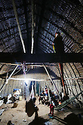 Surui cook and eat from their hammocks, at night, the hammocks hanging from the rafters of a traditional thatched Surui style house that hasn't changed for several generations<br /><br />An Amazonian tribal chief Almir Narayamogo, leader of 1350 Surui Indians in Rondônia, near Cacaol, Brazil, with a $100,000 bounty on his head, is fighting for the survival of his people and their forest, and using the world's modern hi-tech tools; computers, smartphones, Google Earth and digital forestry surveillance. So far their fight has been very effective, leading to a most promising and novel result. In 2013, Almir Narayamogo, led his people to be the first and unique indigenous tribe in the world to manage their own REDD+ carbon project and sell carbon credits to the industrial world. By marketing the CO2 capacity of 250 000 hectares of their virgin forest, the forty year old Surui, has ensured the preservation, as well as a future of his community. <br /><br />In 2009, the four clans and 25 Surui villages voted in favour of a total moratorium on logging and the carbon credits project. <br /><br />They still face deforestation problems, such as illegal logging, and gold mining which causes pollution of their river systems