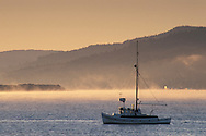 Fishing boat and mist at sunrise in calm water, near Point Reyes, Tomales Bay, Marin County, California