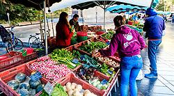 Street market in the Square Charles de Gaulle, Toulouse, France<br /> <br /> (c) Andrew Wilson | Edinburgh Elite media