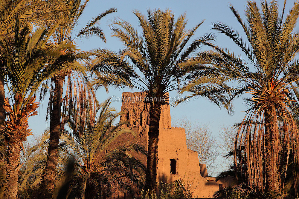 Old Kasbah in Skoura, Oarzazate province, Souss-Massa-Draa, Morocco. Skoura is a fertile oasis lined with immense palm groves. Picture by Manuel Cohen