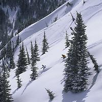 Wayne Grevey and Keith Rollins ski powder, Crystal Mountain, Washington.