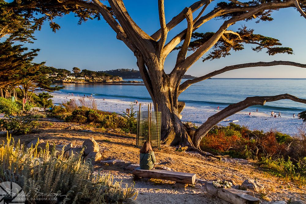 Late afternoon on the Scenic Drive walkway at Carmel by the Sea beach, looking toward Point Lobos across Carmel Bay.